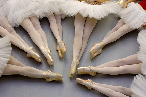 12/04/06---KATHLEEN HINKEL------  The legs of Space Coast Ballet dancers posing for a portrait at their U.S. 1 dance studio in Melbourne on Monday night.  The Space Coast Ballet will be presenting the Nutcracker this month at the King Center in Melbourne.